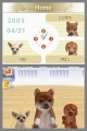 NDS Nintendogs Labrador & Friends
