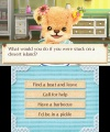 3DS Teddy Together